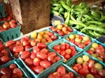 Whats in Season at Sunny Farms Country Store